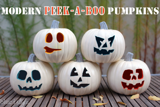 Modern Colorful Peek A Boo Pumpkins