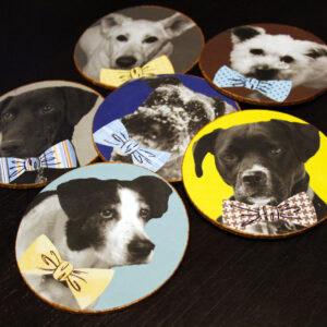 DIY Dog Coasters Craft