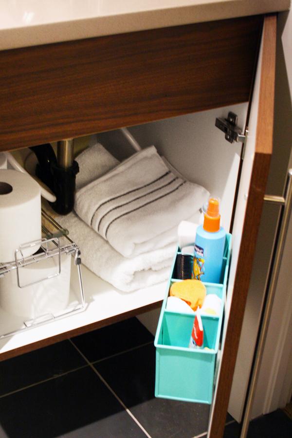 Organize on back of cabinet door under bathroom sink